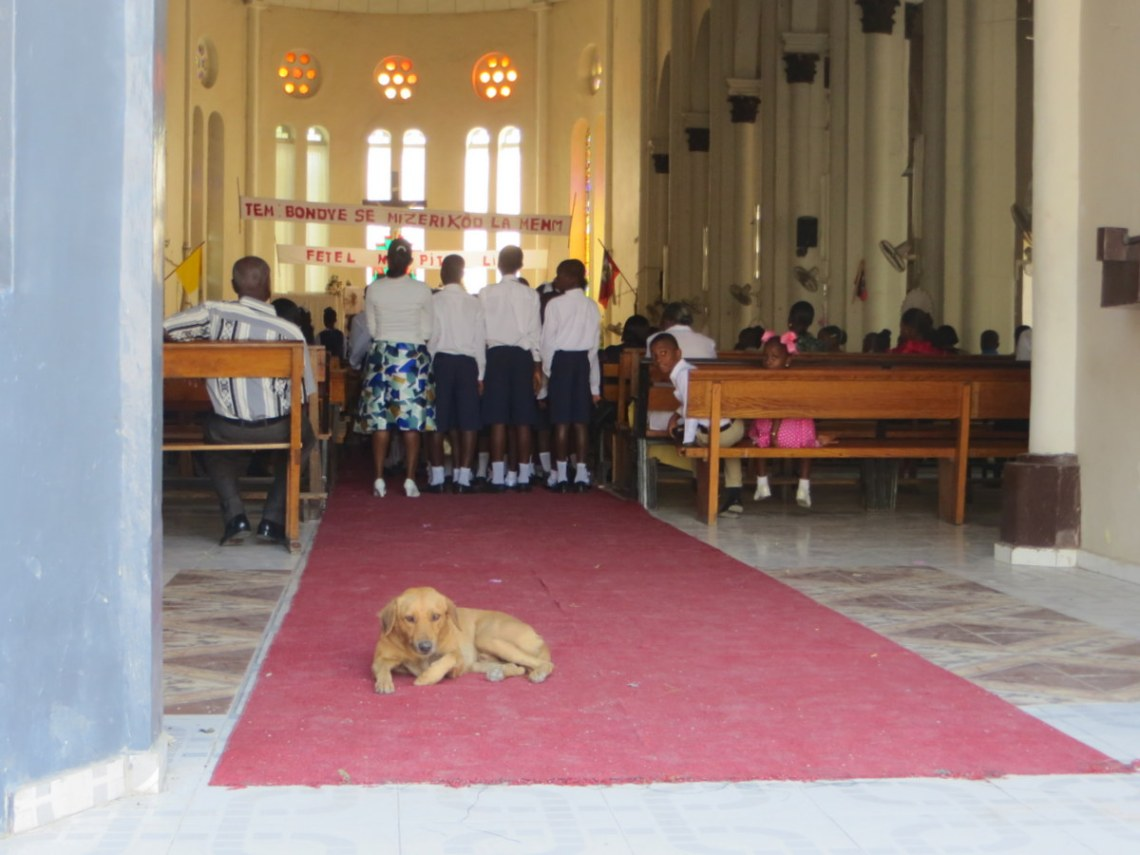 The several dogs iin the church seemed quite at home